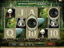 Untamed Panda Gigante