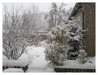 Winterstart im Garten!