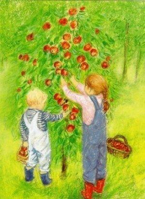 Marjan-van-Zeyl-appels-plukken