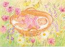 Marjan-van-Zeyl-baby-tussen-de-bloemen