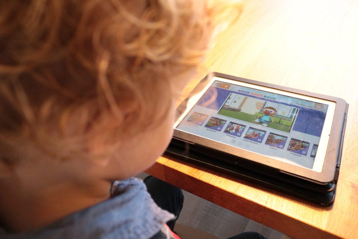 Mybee iPad