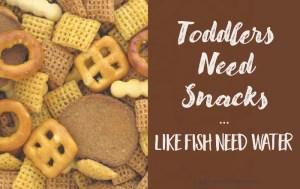 Toddlers Need Snacks Like Fish Need Water