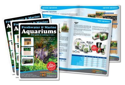 Freshwater & Marine Aquarium Brochure Design