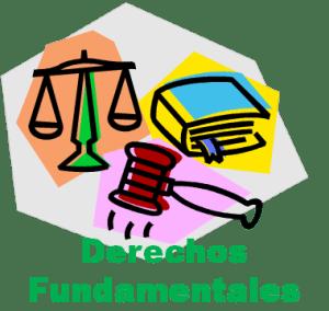 ¿Qué entendemos como derechos fundamentales?