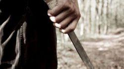 cropped-machete-1.jpg