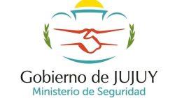 cropped-logo-seguridad.jpg