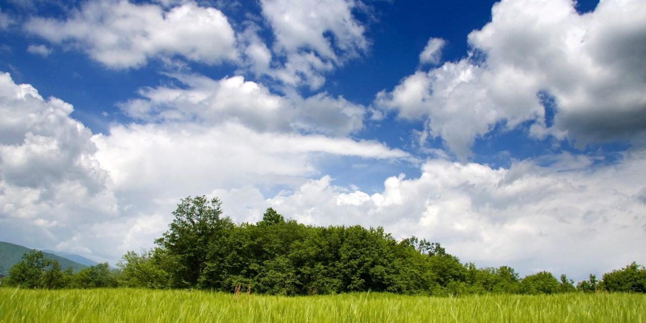Cloud computing adoption curve