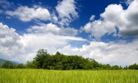 La curva di adozione del cloud