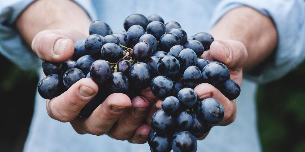 5 Things You Probably Didn't Know About Grapes