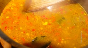Gewürze für Kurkuma Hühnchen Curry - Jules HappyHealthyLife Food Blog