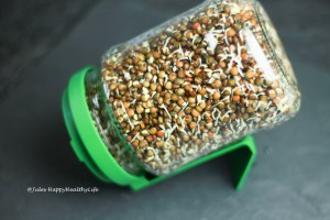 Sprouting lentils for vegan Salad with Sprouted Lentils