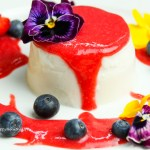 Vegane Kokosnuss Panna Cotta with Strawberry Sauce gluten free