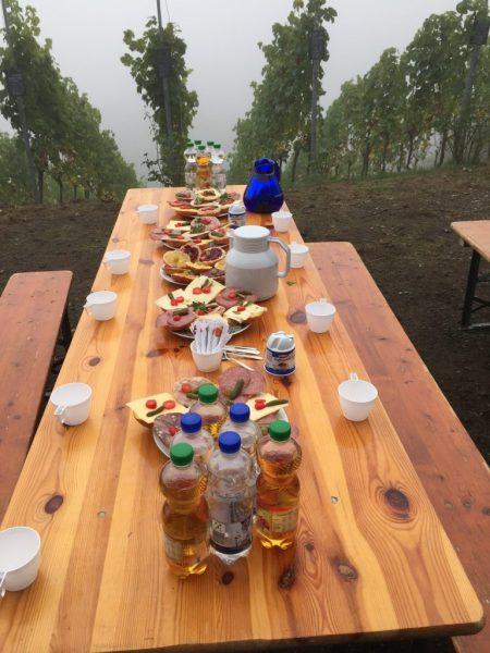 Reichhaltiges Frühstück: belegte Brötchen und Brötchen mit diversen Sorten selbstgemachter Marmelade.
