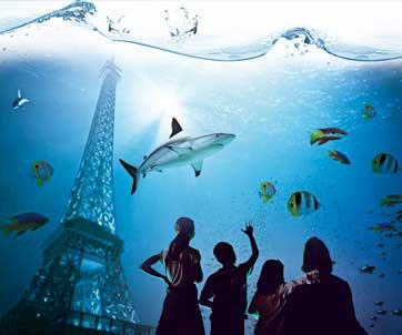 un brunch chez les poissons a l 39 aquarium de paris juliachou. Black Bedroom Furniture Sets. Home Design Ideas