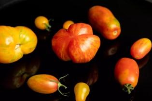 Safari Tomate & Co