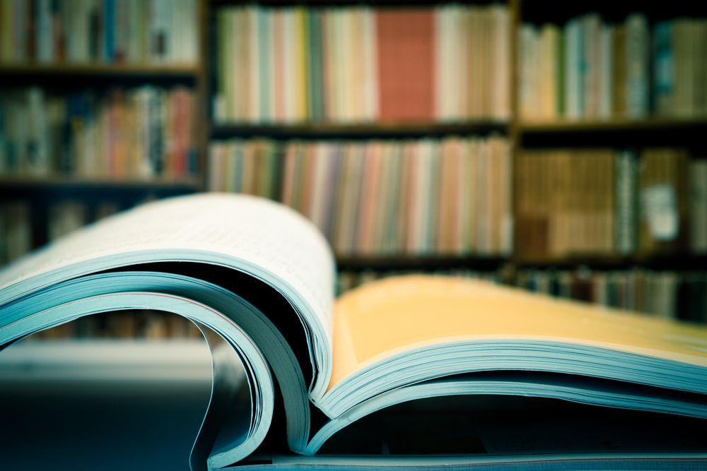 Cómo Hacer Las Referencias Bibliográficas De Los Artículos