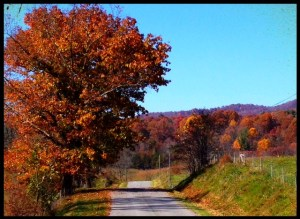 This road runs by my farm. Not a bad place to run, huh?