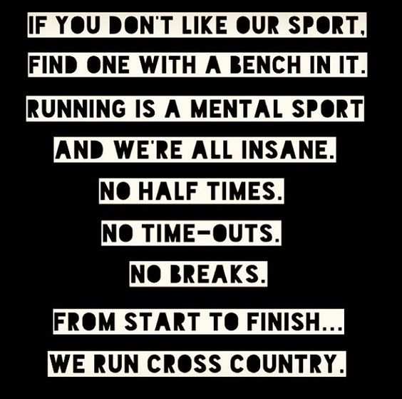 Running Quotes To Inspire Diary Of A Word Nerd New Cross Country Quotes