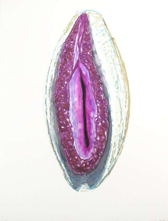 Dessin Vagine N° 33 Exposition les Vulnérables Julie Barranger