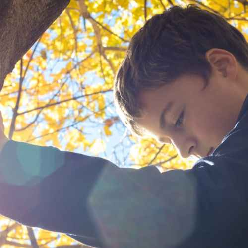 photo of a boy looking down standing by a tree