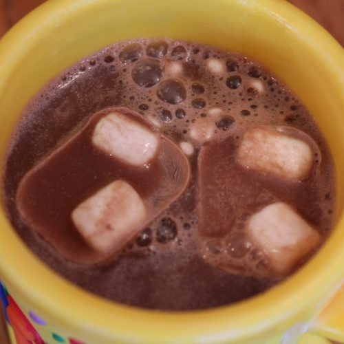 DIY Hot Chocolate Ice Cubes