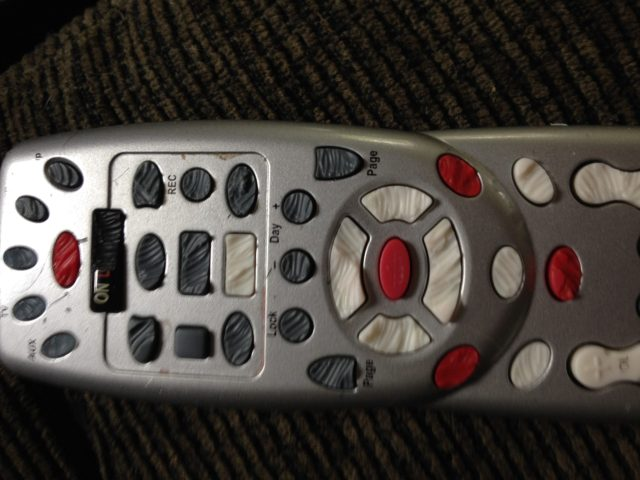 Remote control buttons chewed off by guinea pigs.