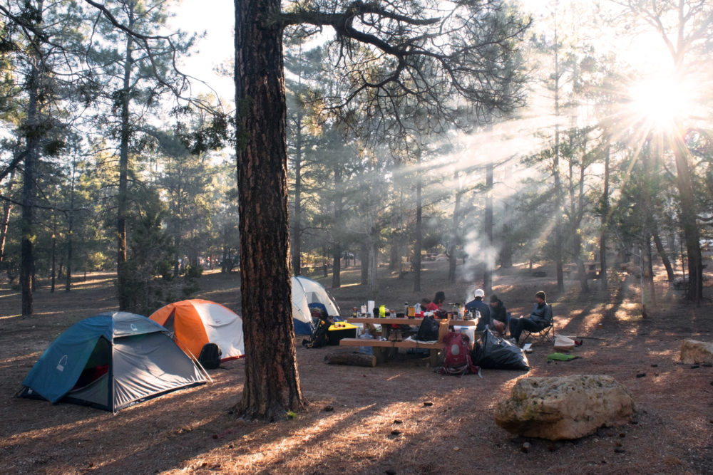 Family camping. Campsite with tents in the woods.