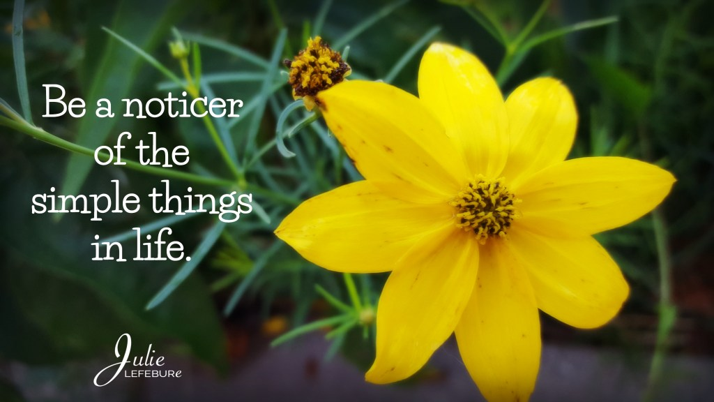 Be a noticer of the simple things in life.