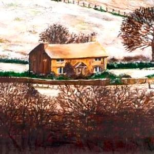 Iris's Cottage   Oil on Canvas by Julie Lovelock
