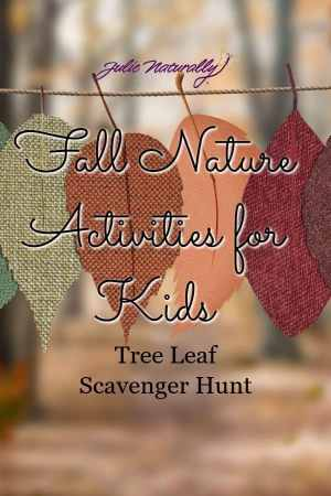 fall nature activities for kids: tree leaf scavenger hunt