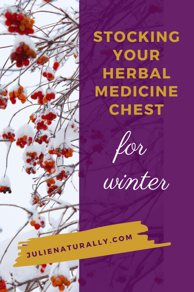 tree branches with red buds in winter for winter herbal medicine chest