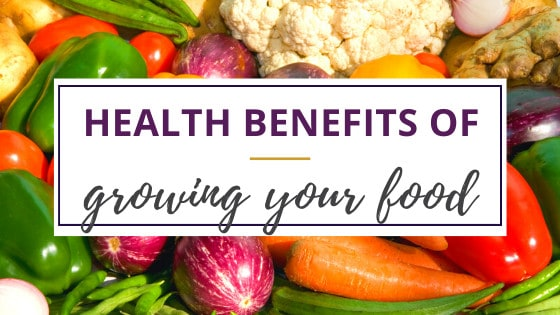 Health benefits of growing your own food like eggplants, carrots, tomatoes, zucchini, and other fresh vegetables