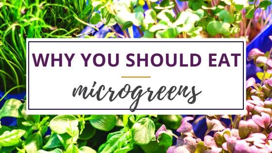 benefits of eating microgreens