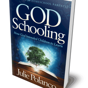 God Schooling: How God Intended Children to Learn book