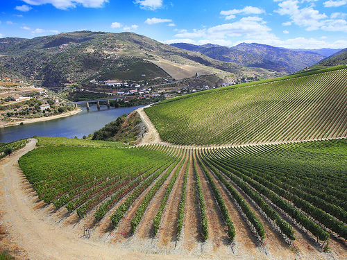 Le Douro au Portugal - Source:titoalfredo @ Flickr