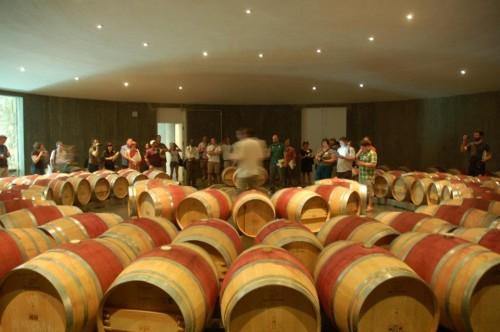 Le groupe de Tastecamp, écoutant les explications d'Adam McTaggart, winemaker chez Boxwood