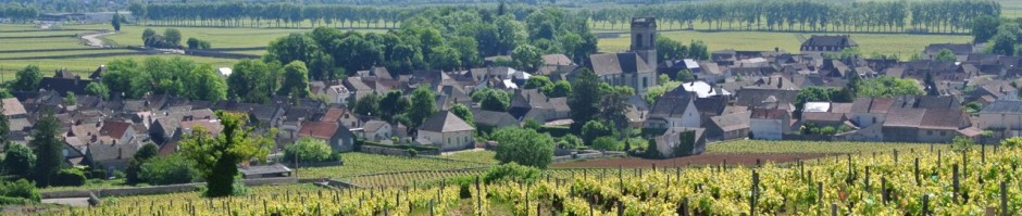 Village de Pommard