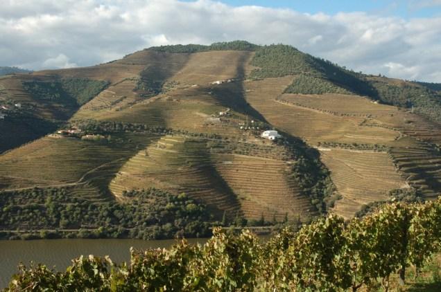 Terrasses du Douro
