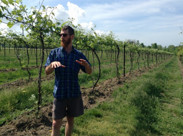 Ethan Joseph, winemaker chez Shelburne Vineyard