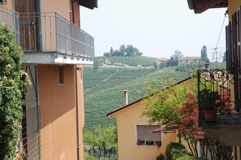 Vignobles à Barbaresco