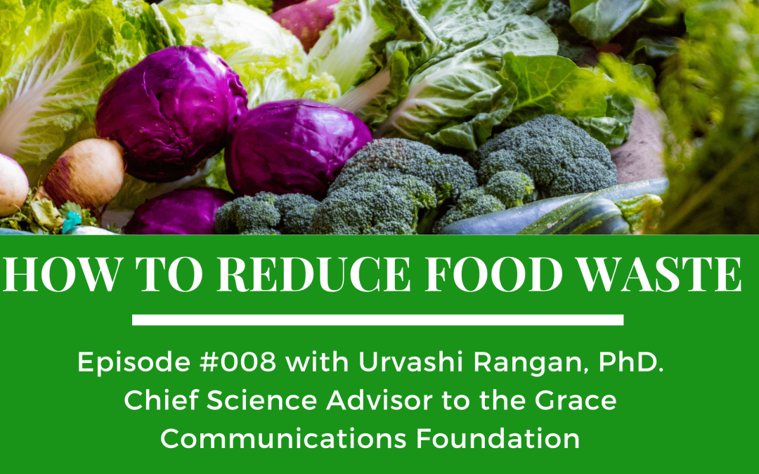 Episode 008: How to Reduce Food Waste
