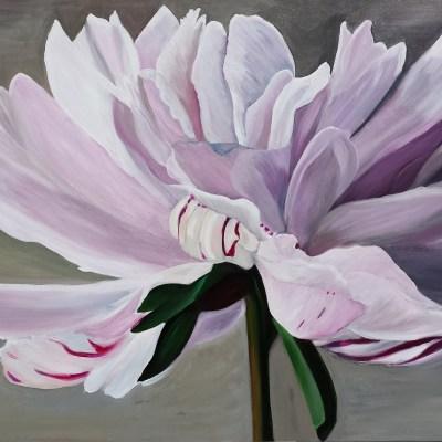 drama-queen-peony Julie Schofield Artist