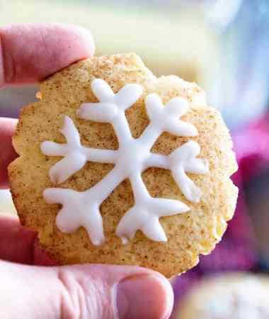 Snowflake Snickerdoodles