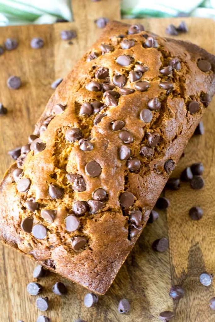 Loaf of homemade pumpkin chocolate chip bread recipe