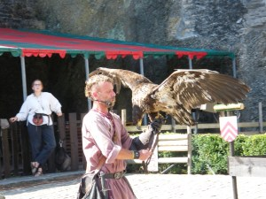 steppe-eagle-at-chateau-de-bouillon-2