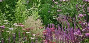 Sussex Garden Designer