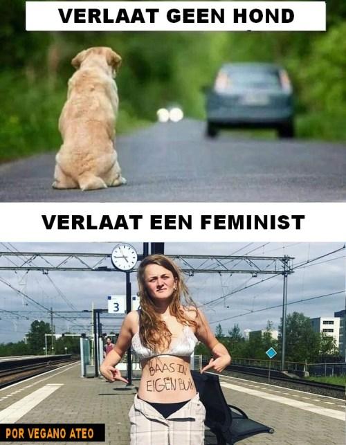 verlaat geen hond verlaat een feminist