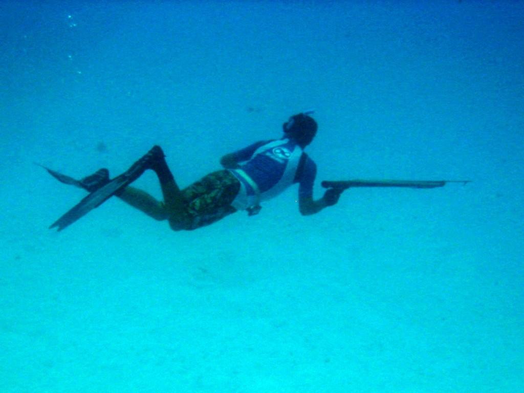 Bora Bora Dive 2