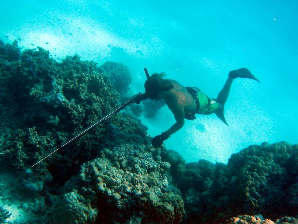 Bora Bora Dive 4