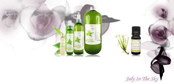 blog beauté astuces naturelles déodorant gel aloe vera huile essentielle palmarosa avis